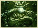 Salamander King